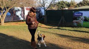 Sancaktepe Köpek Eğitim Çiftliği