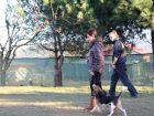 Unkapanı Köpek Eğitimi
