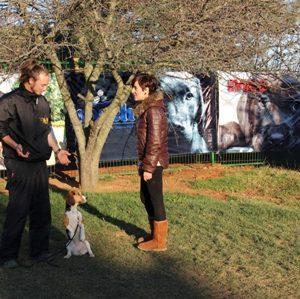 İstanbul Beykoz Köpek Eğitim Merkezi