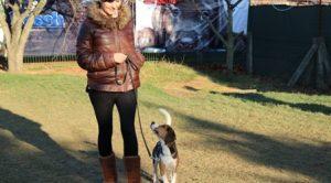 Sultanbeyli Köpek Eğitim Merkezi